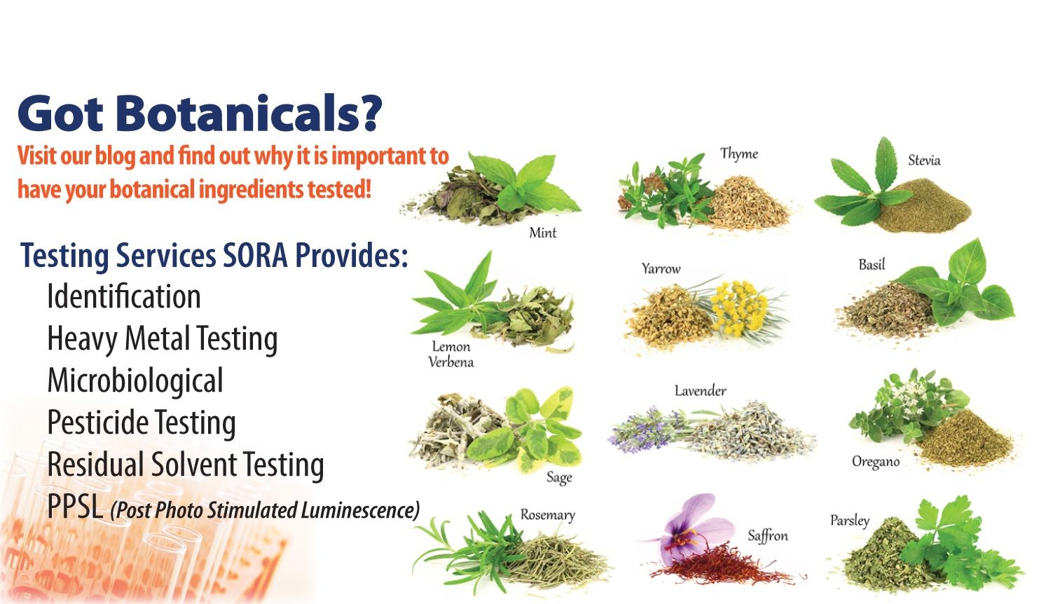 SORA-Botanical-2-2
